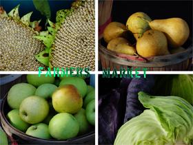 20010303-kalamazoo-farmers-market